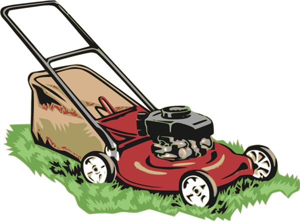 Expert Lawn And Garden Care